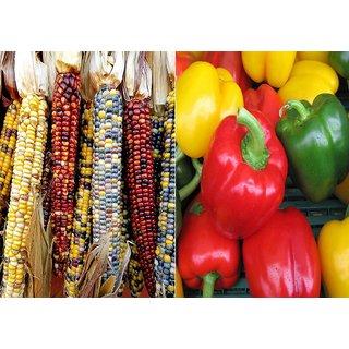 Dioart Corn Seeds-1343