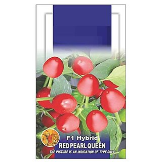 Dioart Chilli Seeds-645