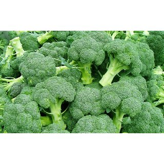 Dioart Broccoli Seeds  50 SEEDS 412