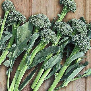Dioart Broccoli Seeds  50 SEEDS 475