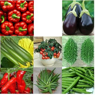Vegetable Hybrid Combo Pack of 9 type of Seeds