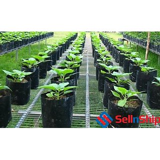 Plastic Recyclable Poly Grow Bags Plant Set Of 10