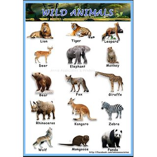 buy a3 size children color poster wild animals chart 2 nos with
