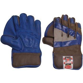 Virlok Wicket Keeping Gloves
