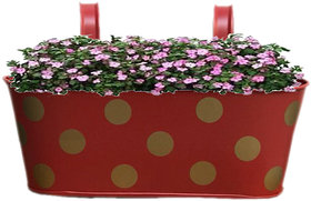 Heaven Decor Metal Red Oval Shape Railing Planter ,Railing Flower Garden Pots and Wall Planters for Balcony