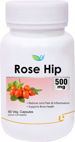 Biotrex Rose Hip Extract 500mg - 60 Veg Capsules