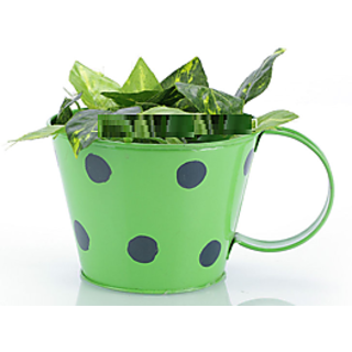 Going Greens Single Metal Cup Shape Green Planter with Polka Dot