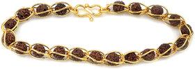 Mahi Rudraksha Gold Plated Religious Bracelet for Men  Women BR1100260G