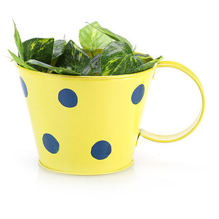 Going Greens Yellow Single Metal Cup Shape Planter with Polka Dot