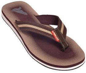 Podolite Flip Flop And House Slippers For Men