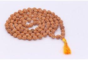Rebuy 5 Mukhi Rudraksha Mala 6mm 108 +1 Beads
