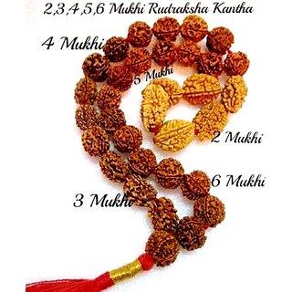 RUDRAKSHA 2,3,4,5,6 MUKHI JAPA MALA KANTHA NEPALESE 32+1 COLLECTOR BEADS YOGA