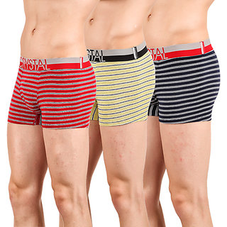CRYSTAL STRIPO TRUNK Colour (Pack of 3)