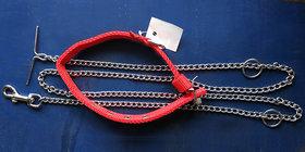 Set of Dog Chain Leash  Collar