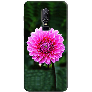 OnePlus 6 Cover , OnePlus 6 Back Cover , OnePlus 6 Mobile Cover By FurnishFantasy - Product ID - 1795