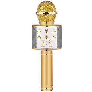 PAGALY  WS-858 Wireless Portable Handheld Singing Machine Condenser Microphones Mic And Bluetooth Speaker Audio Record