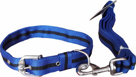 W9 High Quality Nylon Leash And Collar Set For Large Do