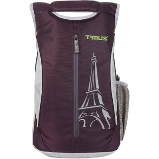 Timus Class 19 Litres Purple College Bag School Casual Backpack for Boys and Girls 19 L Backpack (Purple)