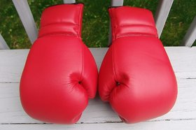 Samrat Original Leather Red Boxing Gloves