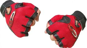 Takson Sales Polo Gym Gloves (Assorted Colours)