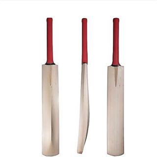 tigerus plain kashmir willow Cricket Bat