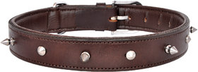 Pride infinite Brown Colored Leather Dog Collar (Large - 1.25 Inch-Adjustable)