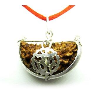 14.3mm 1 Face Rudraksha Kaju dana Nepal 1 Mukhi Rudraksha bead