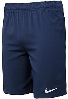 Nike Polyester Shorts For Men (Navy Blue)