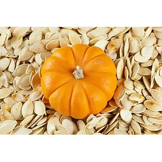 Vegetable Seeds Pumpkin Seeds - Safed Kaddu ,Kumbalanga