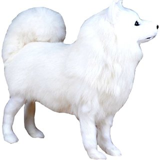 Spitz White Puppy Dog Large (48 cm / 20 -inch) Stuffed Toy Soft Teddy Bear Plush Toy Doll for Kids Best for Gift