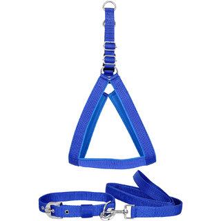 Pride Infinite Blue Colored Nylon Dog collar, Harness  Leash (Medium - 1 Inch)