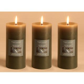 Hosley Set of 3 Eucalyptus Mint 6Inchs Pillar Candles