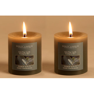 Buy Hosley Set Of 2 Eucalyptus Mint 3inchs Pillar Candles Online