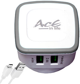 AcE(2.1AMP+1AMP) 2 USB flash charging for INTEX (ACE-2112)
