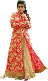 Indo Western Embroidery Designer Gown
