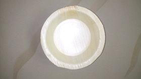6 inch bowl areca leaf plates