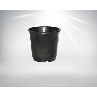 Flora Bonsai- Black Pots For Gardening- 6 Inches- Set Of 12