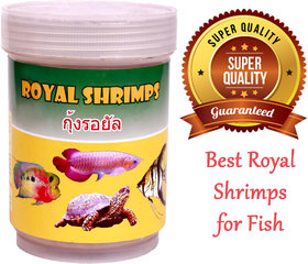 AMORY - 100 Best Royal Shrimps for Fish