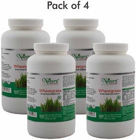 Naturz Ayurveda Wheatgrass 500 Tablet (Pack of 4)