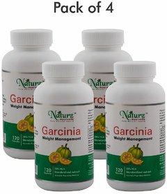 Naturz Ayurveda Garcinia 120 capsules - Pack of 4