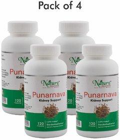 Naturz Ayurveda Punarnava 120 capsules - Pack of 4