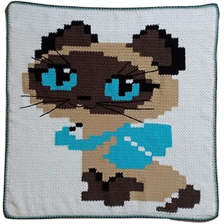 Kitty Baby Blanket