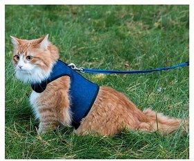 Cat Halter Good for cat