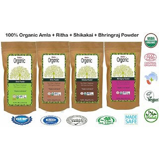 Radico 100 Organic Amla + Ritha + Shikakai + Bhringraj Powder - Combo Pack