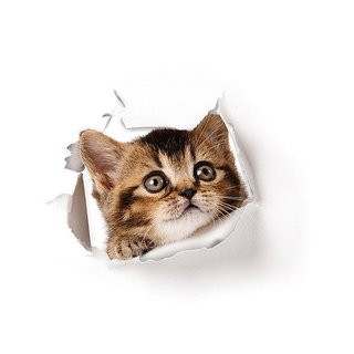 Futaba 3D Cat Hole View Cute Toilet Sticker - F