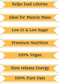 Flex Protein Lean Mass + (Instant Oats) Chocolate Flavo