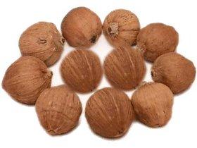 Ever Forever Laghu Nariyal /Shreephal / Mini Coconut Set of 11 Pcs