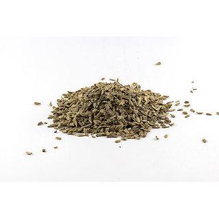 Seeds Carnation Multi-Colour Premium Exotic Seeds