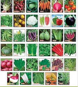 Seed - Variety Other Combo Pack Of 30 Multicolor Vegetable For Terrace And Kitchen Gardening