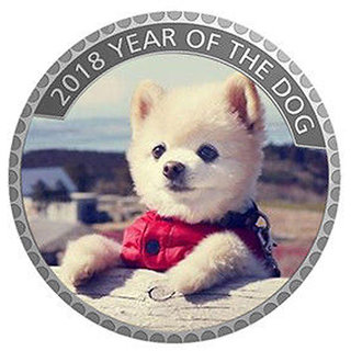 Classic Puppy Coin 2018 Year of Dog Home Decorative (B)Silver Plated Coin in Capsule box 40mm X 3 MM